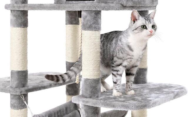 Árbol rascador para gatos